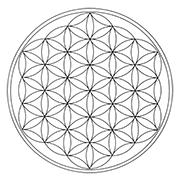 holografický vesmír